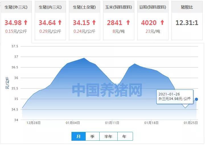 """1月26日猪价:大面积上涨!马上涨破""""35""""元?后市行情如何?"""