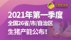 2021年第一季度全国26省/市/自治区生猪产能公布