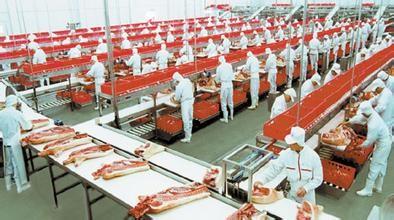 08月17日猪价:涨势继续!下半年猪肉进口量或将下降50%?